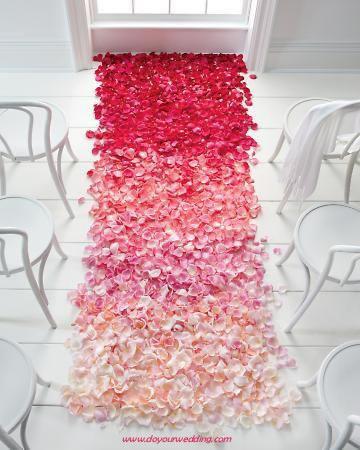 Fresh Rose Petals In All Colors